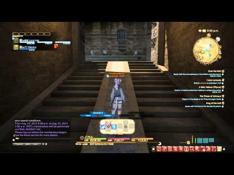 FFXIV How to Customize HUD on PS4
