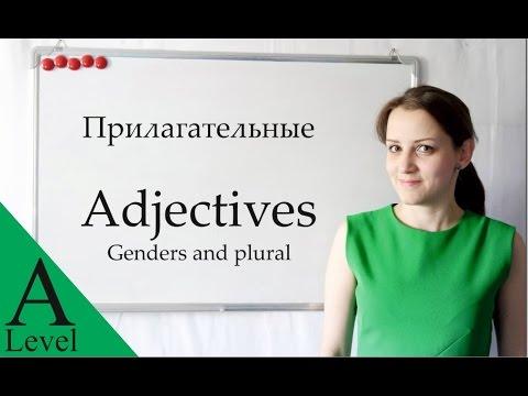 6. Russian Grammar: