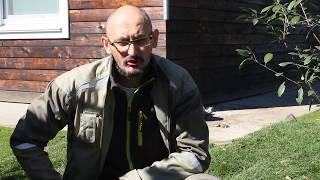 видео Дернина или укладка рулонного газона