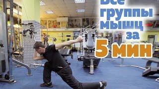 Тренировка на все группы мышц за 5 мин