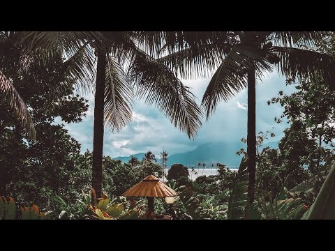 FREE AFROBEAT X DANCEHALL | mr eazi x patoranking type beat | sexual healing