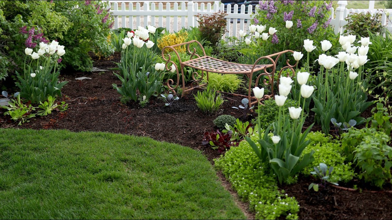 spring planting ant control &