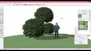 как сделать растение в SketchUp из фотографии