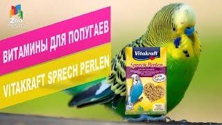 Витамины Vitakraft Sprech Perlen для волнистых попугаев | Обзор витамин Vitakraft Sprech Perlen