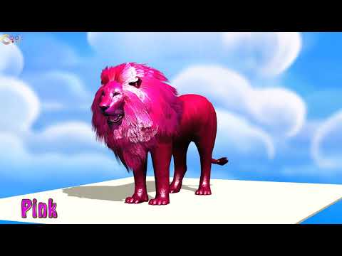 Learn Colors and Numbers with Animal Lion colorful eat Apple cartoon for Children