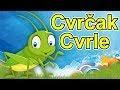 Cvrčak Cvrle - HIT pesmica za decu | Dečija pesma | Muzika za decu | Pesmice o životinjama | Cvrle