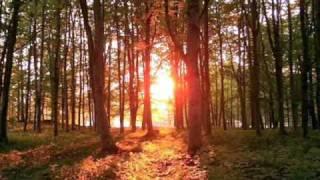 Agostinho dos Santos - Estrada do Sol