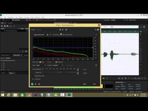 Adobe premiere pro remove background noise video vittoria vinci