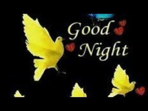 good-night-status||-video||-song||-whatsapp||-download||-hindi||-image||
