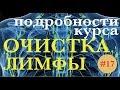 ОЧИСТКА ЛИМФЫ подробности программы mp3