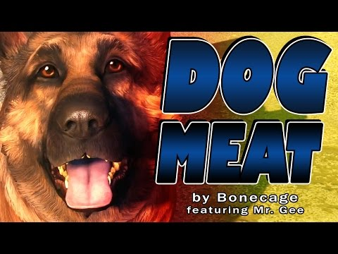 "FALLOUT SONG ""Dogmeat"" by Bonecage"