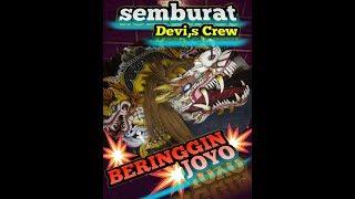 Perdana Metu Barongan Devil,S Semburat Beringin Joyo - Bengkulu