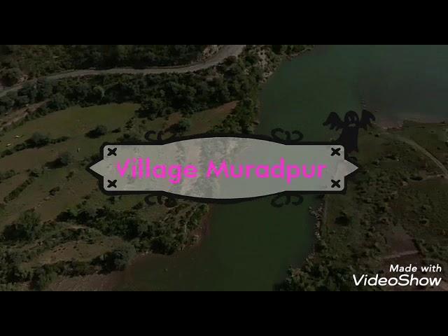 Terbela Dam Lake, Tourist's Visit of Village Muradpur