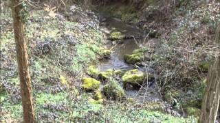 Huayno de la Roca Si menor