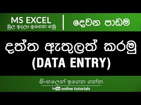 Microsoft Excel Beginner Course (Sinhala) Part 02 - Data Entry