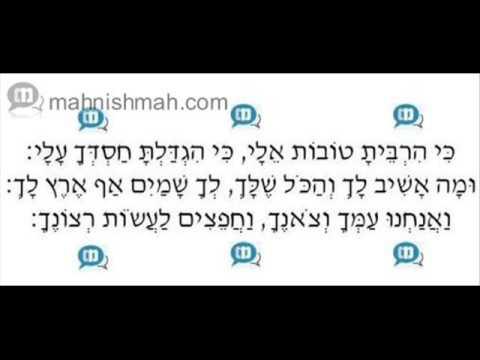 Ara'le Samet & Meir Adler - Ki Hirbeisu