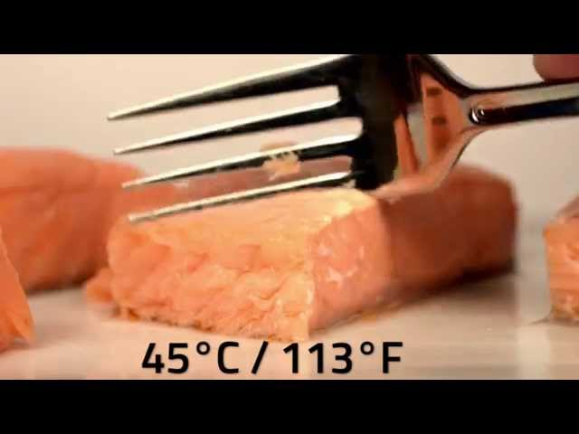 Sous vide salmon at different temperatures