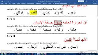 Samsun İLİTAM Arapça 1 Çıkmış Soru Çözümü
