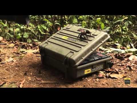 Explorer Cases   Borneo 2014