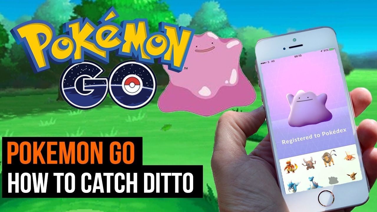 Catching Ditto In Roblox Pokemon Go Pokemon Trainer Tips Pokemon Go How To Catch Ditto Youtube