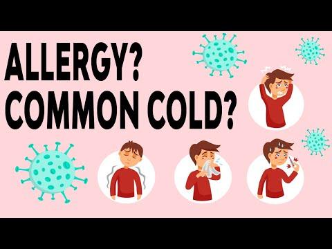 what-is-allergic-rhinitis?-common-cold?-过敏性鼻炎-🤧