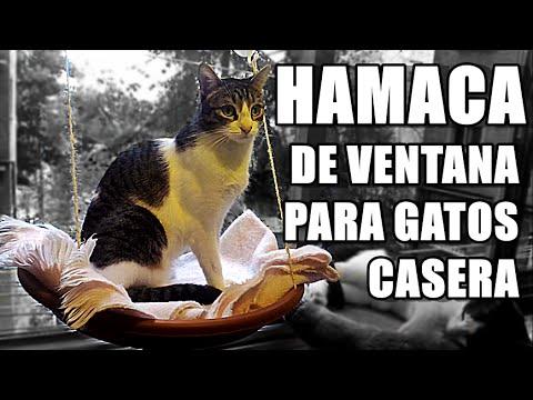 Diy cama hamaca de ventana para gatos f cil y barato - Camas para gatos ...