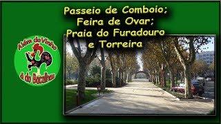 Passeio de Comboio, Feira de Ovar, Praia do Furadouro e Torreira.