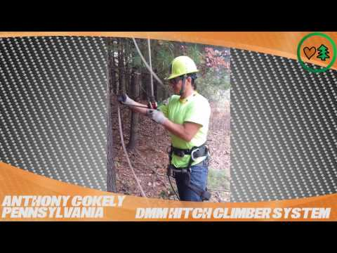DMM Hitch Climber Pulley System: TreeStuff.com Customer Anthony Cokely's Field Review