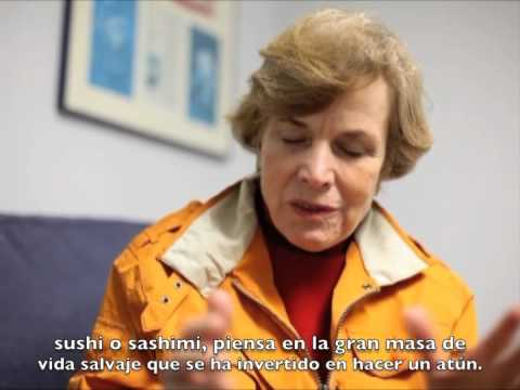 Must see Sylvia Earle interview excerpt, with Spanish subtitles