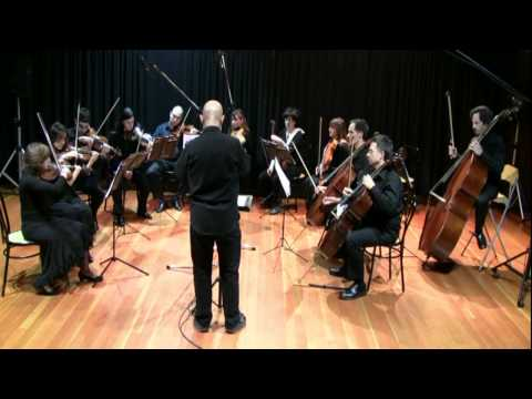 Tchaikovsky Elegy for strings - Roma Chamber Orchestra