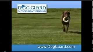 Dog Guard Out Of Sight Pet Fence
