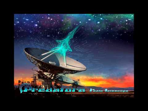 Predators - Arecibo message (Feat.psukoy)