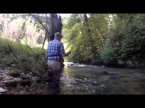 Natural Mystic   Le Doub   Flyfishing Switzerland