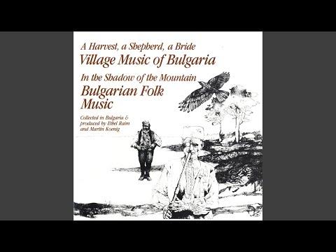 Svornato - Pajdushko