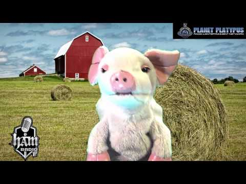 Piggy Mcpiggy goes on Ham Radio