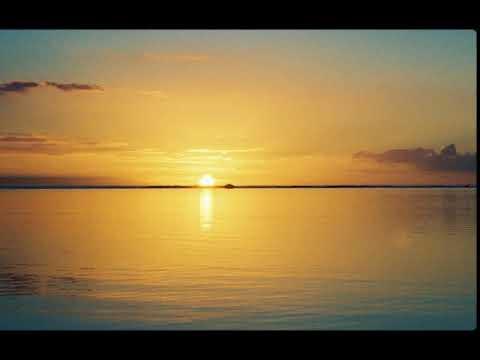 L'Ocean _ PLV _ Pas Le Vendredi