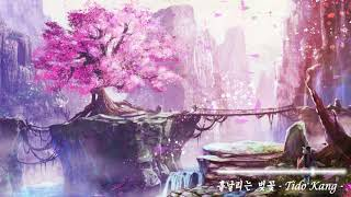 아련한 동양풍 음악 - 흩날리는 벚꽃 ( Sad Oriental Music - Blowing cherry blossoms ) | Tido Kang