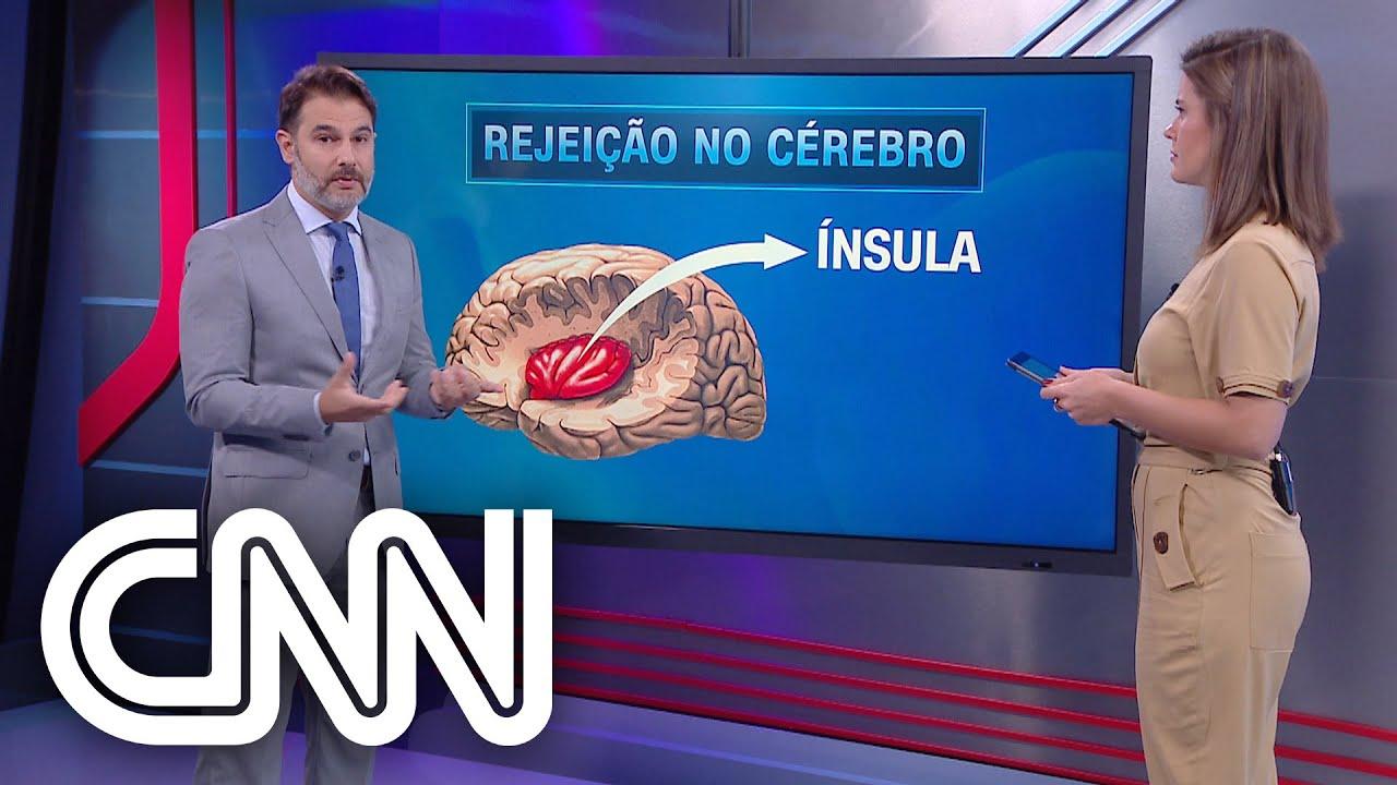 Entenda como o cérebro reage a situações de rejeição e perseguição - Correspondente Médico - YouTube