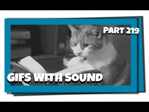 Gifs With Sound Mix - Part 219