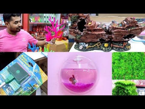 Fish Tank Decoration & Aquarium Products At Naaz Aquarium Kurla