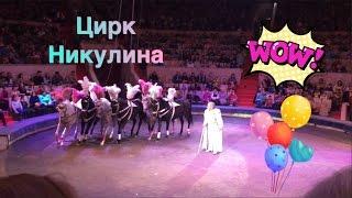 VLOG Цирк Никулина в Уфе Наш добрый цирк видео для детей