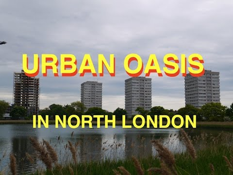 London Oasis Trail - Woodberry Wetlands To Walthamstow Wetlands
