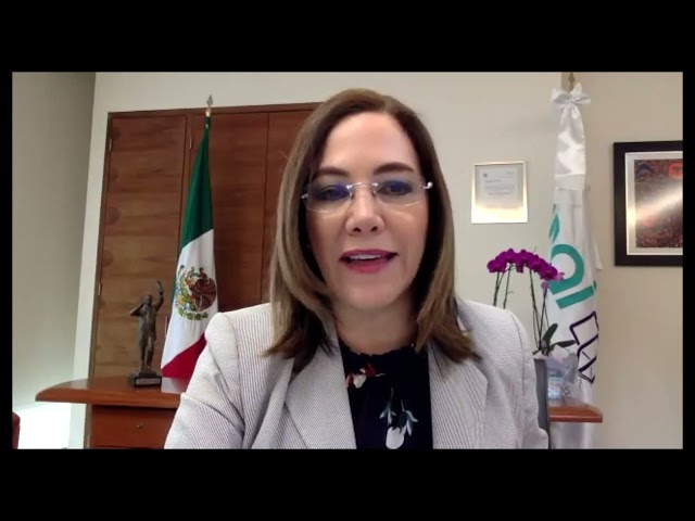 IMPULSA INAI PUBLICACIÓN DE OBRAS EDITORIALES PARA SOCIALIZAR EL CONOCIMIENTO Y EJERCICIO DE LOS...