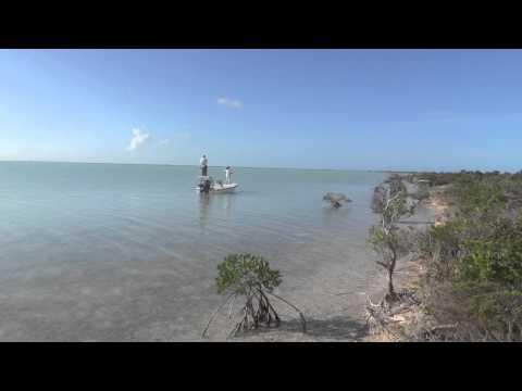 Bahamas Bonefishing 2013  Andros