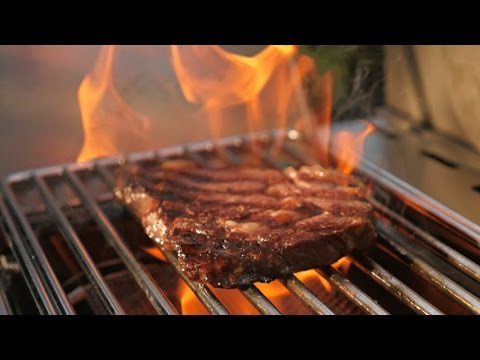Is this the best gas grill money can buy?   NAPOLEON PRESTIGE PRO 500 - Gas Grill Review