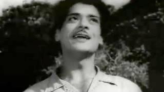 Chal Ud Jare Panchhi - Mohammed Rafi, Bhabhi Song 1