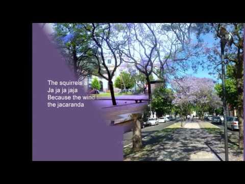 Jacaranda Song