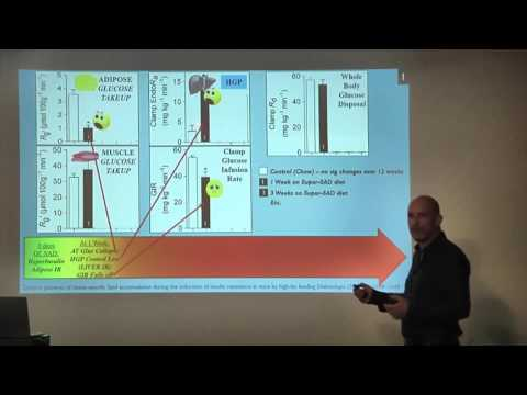"""Ivor Cummins: """"Roads to Ruin?"""" The Pathways and Implications of Insulin Resistance"""