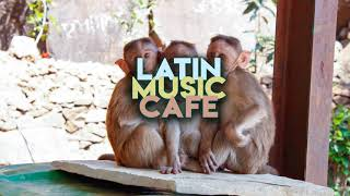 blasphonic - Dancing in the Streets | Latin Music Cafe ☕