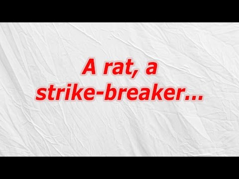 A rat, a strike breaker (CodyCross Answer/Cheat)